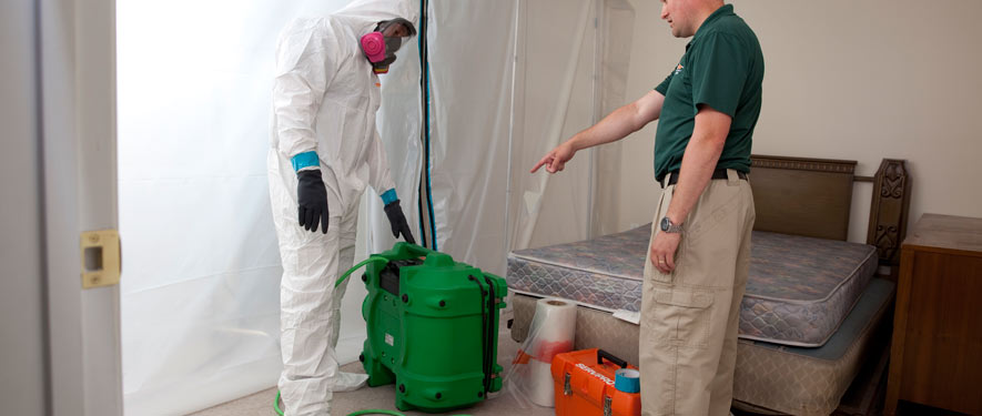 Baytown, TX mold removal process